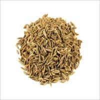 Export Quality Cumin Seeds