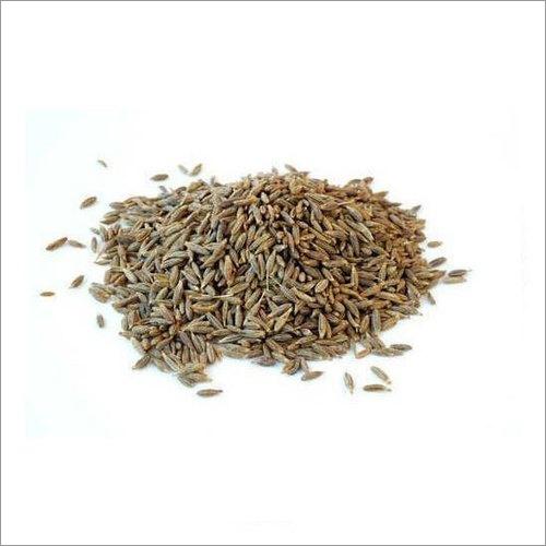 99 Percent Europe Cumin Seeds