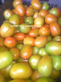 25 Kg Crate Packed Green and Red Tomato