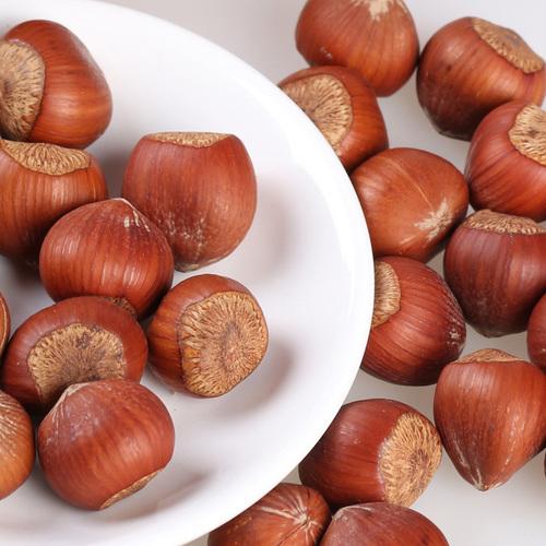 Hazelnut , Roasted , Organic , Orginal High Quality , Premium Selected Available