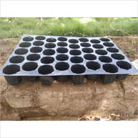40 Cavity Seedling Tray