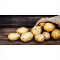 Pure Potato