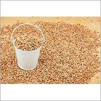 Bucket Wheat