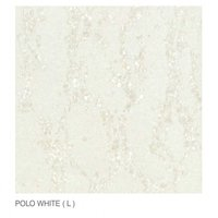 600 X 600 Mm Polo Light Series Double Charge Tiles