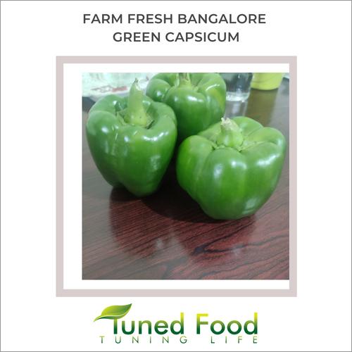 Green Bell Pepper / Capsicum