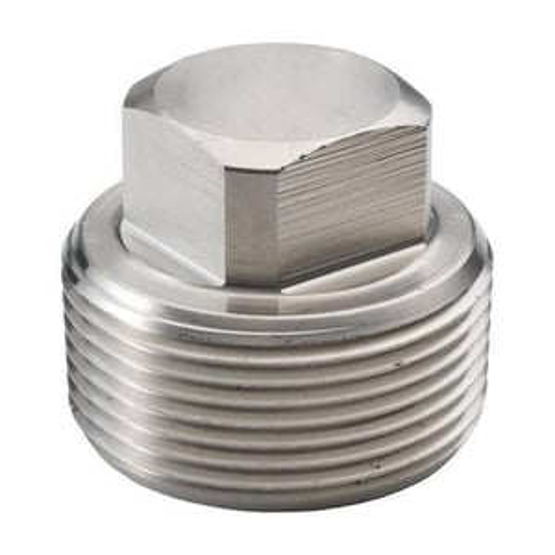 SS Cap Plug