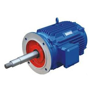Flanged Motor