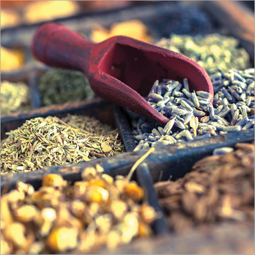 Phytochemical Testing Services