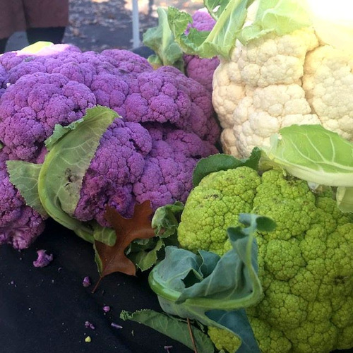 Fresh And Frozen Cauliflower