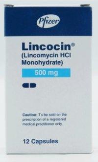 Lincocin 12 Capsules