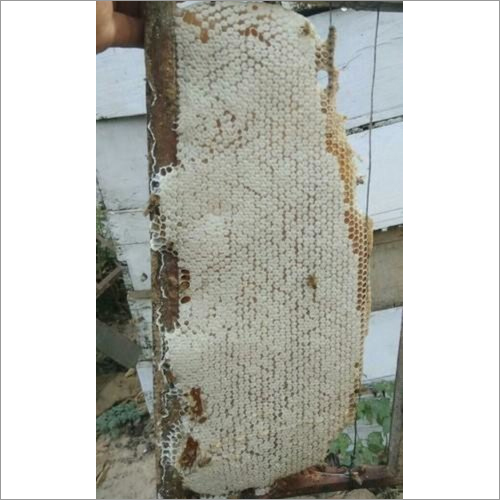 Organic Natural Honeycomb