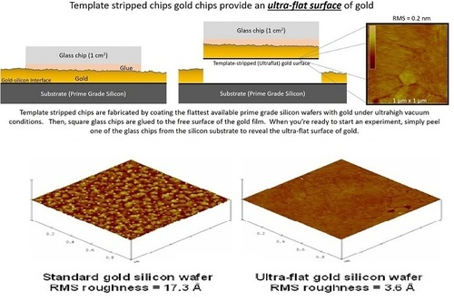 Ultra-Flat Gold Surfaces  Gold Thin Films