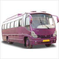 Tourist Windsor Bus