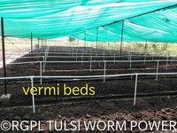 Tulsi Worm Power Vermicompost