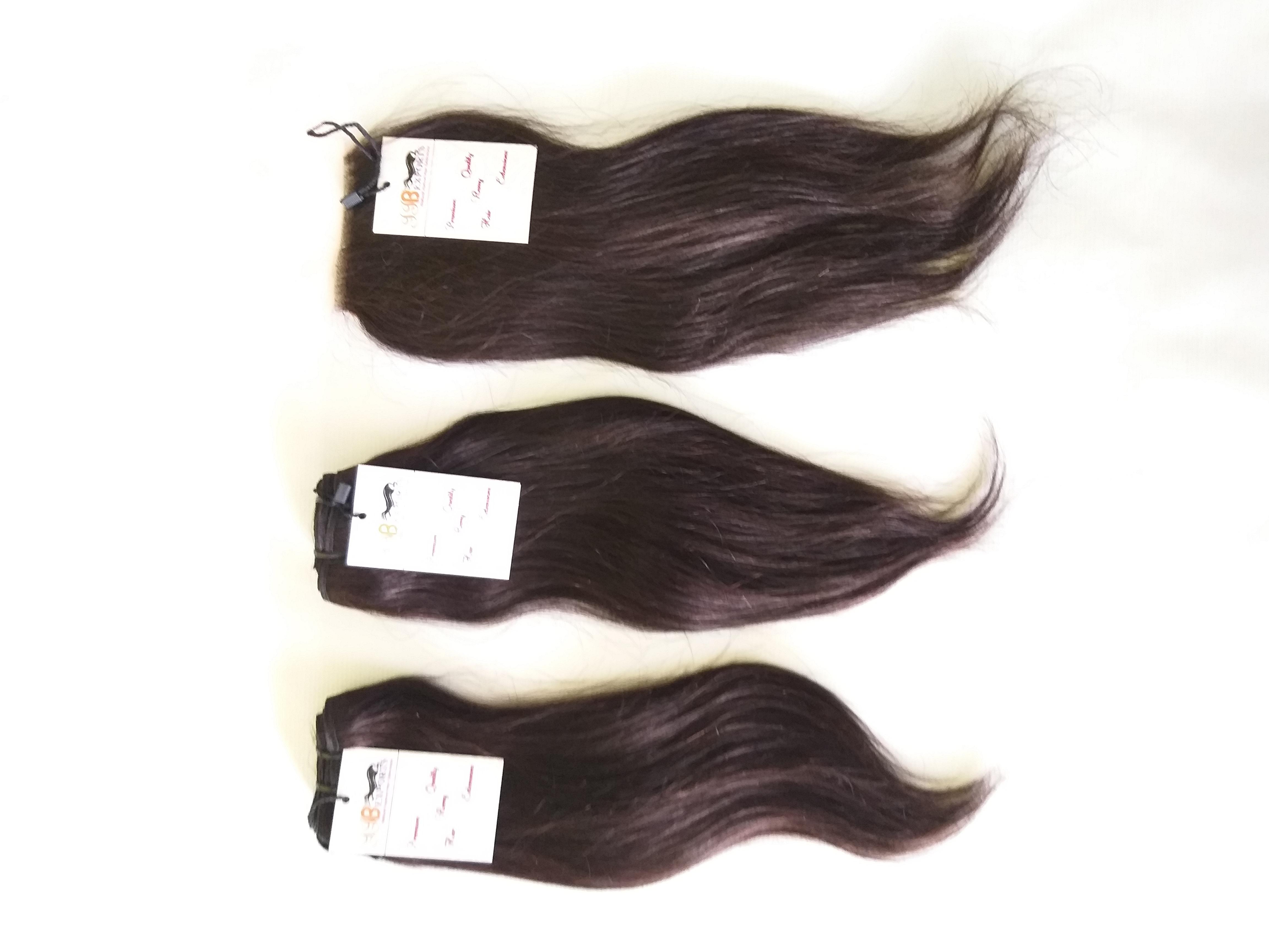 Natural straight brazilian human virgin hair bundles with lace closure human hair