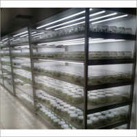Tissue Culture Growth Rack With LED Lights