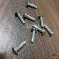 18mm Mild Steel Screws Nickel