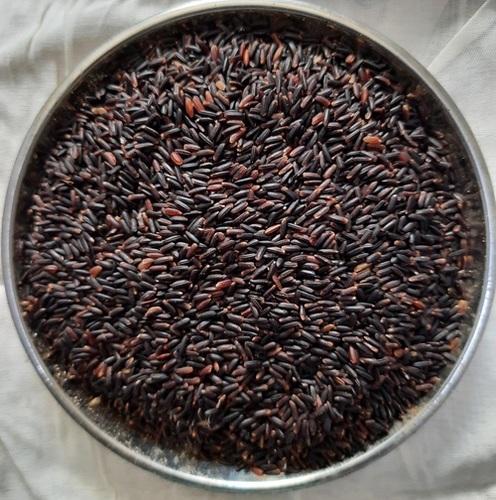 Forbidden Rice Wholesale In Erode