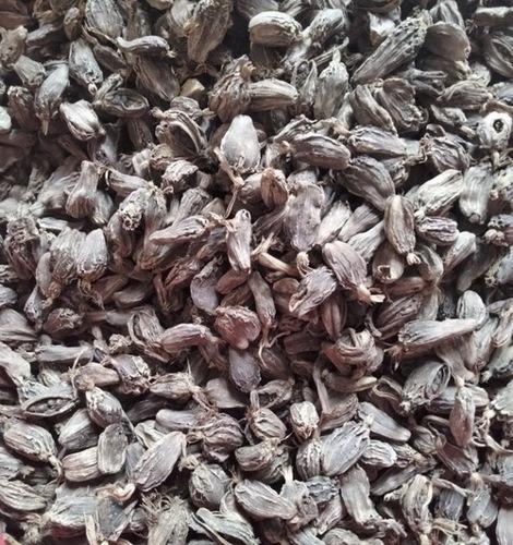 Large Black Cardamom