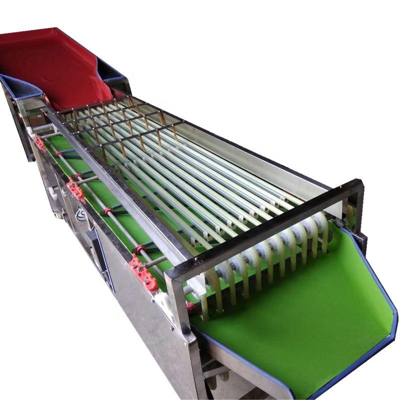 Automatic Fruit Jujube Sorting Grading Machine