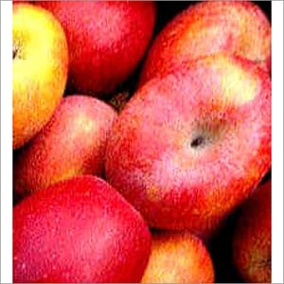 Fresh Red Gold Apple