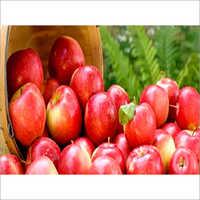 Rich Red Apple