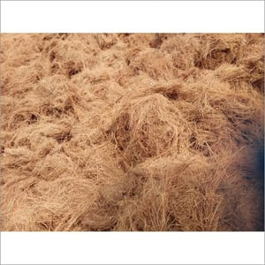 Vetiver Root Without Stem
