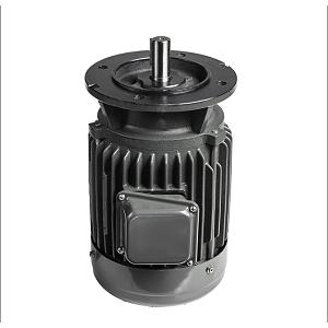 AEVF 01 IEC Motor