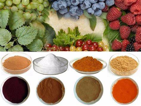 Fruits Powder