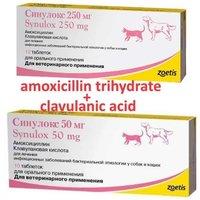 Amoxicillin Trihydrate and Clavulanic Acid Tablets