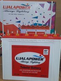 Tall Tubular Batteries