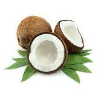 Ungerer Coconut Fragrance - for Cosmetics / Perfume / Toiletries 5.0