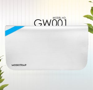 GW 001 Sticky Fly and Mosquito Catcher