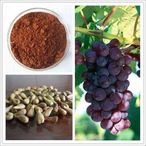 Grape Seed Extract 95 %