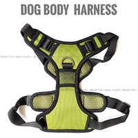 Dog Body Fancy Harness