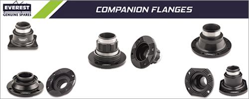 Companion Flanges