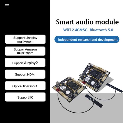 Audio Receiver Module OEM/ODM Wire/wireless