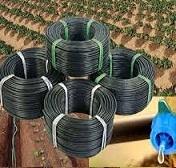 Jain Drip Irrigation System