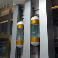 Hydraulic Capsule Elevators