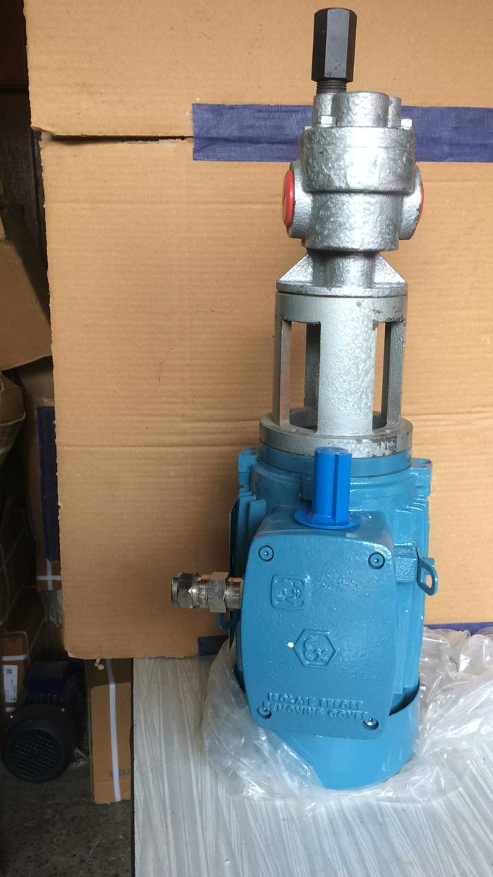 Closely Coupled Rotomatik Rotary Gear Pump