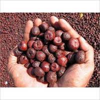 Red Areca Nut