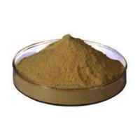 Fish Protein Hydrolysate Powder
