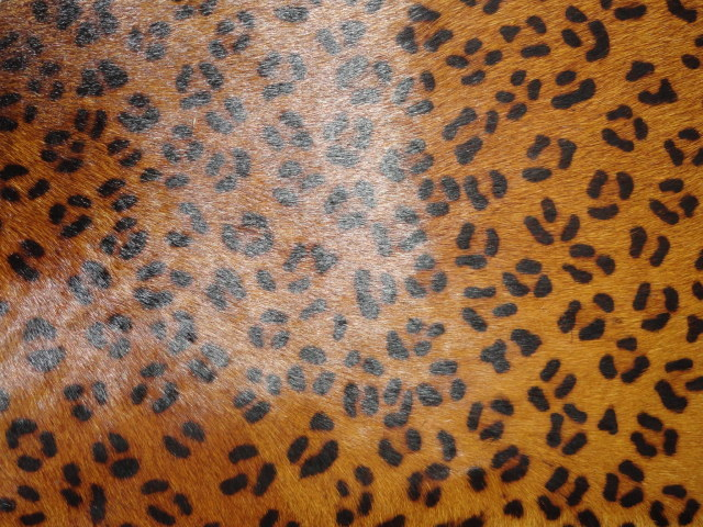 Leport Print Hair on Hide Leather