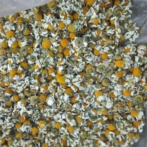 Camomile Dry Flower