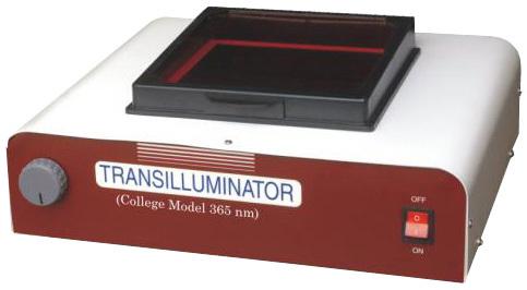 U.V. Transilluminator