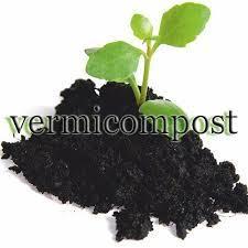 Vermicopost Fertilizer