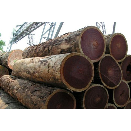 Azobe Wood Logs (Ekki)