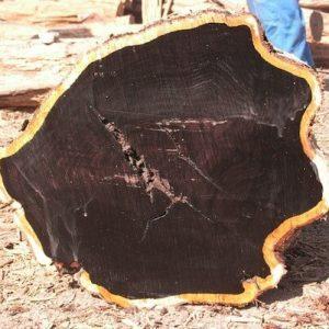 Ebony Black Ebony Wood Logs