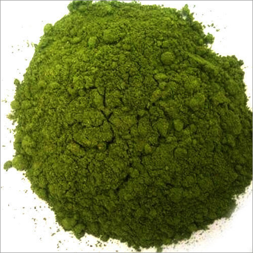Coriander Leaf Powder