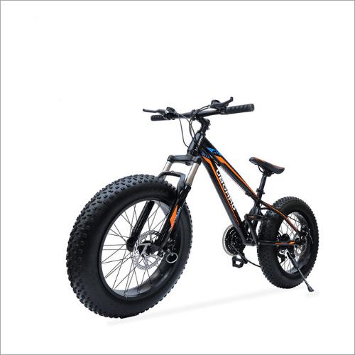 Evo E Bike